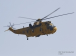 seaking-fri-2