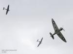 spitfires-1