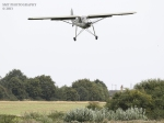 storch-1